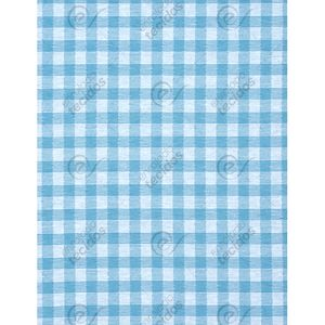 jacquard-azul-turquesa-e-branco-xadrez-fio-tinto-principal.jpg