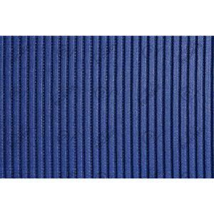 passadeira-azul-principal