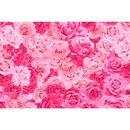 tecido-jacquard-estampado-rosa-e-pink-detalhe