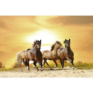 painel-sublimado-cavalos
