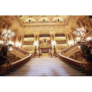 painel-sublimado-opera-paris