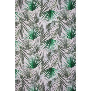 palm-verde