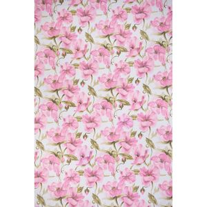 orquidea-rosa